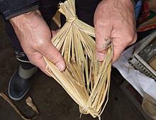 伝統を守る納豆づくり